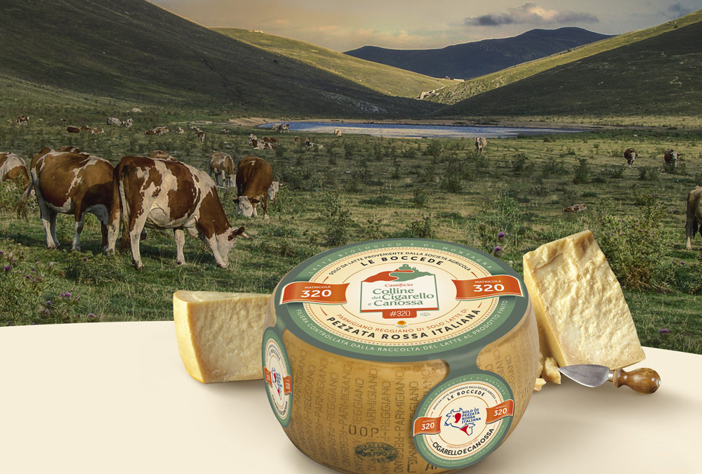 "Parmigiano Reggiano ""Italian Simmental breed only"""